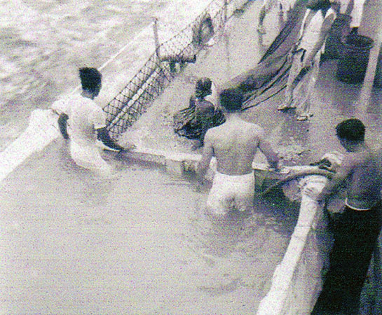 Cold-War-Crew-Shellback-10