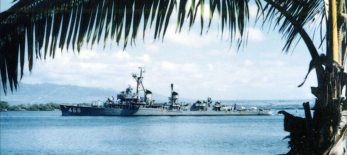 Vietnam-Ship-Photos-taylor-palm-tree