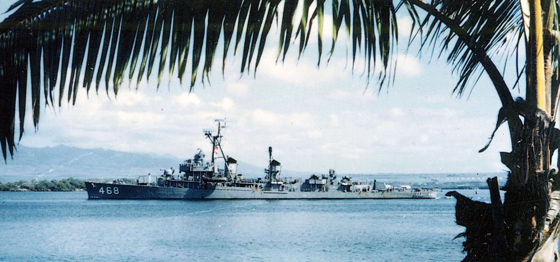 The-Ship-Photos-Vietnam-Taylor-framed-by-palm-tree